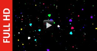 Animated Heart Shape Particles Black Background
