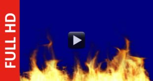 Fire Flame Blue Screen in Free Download