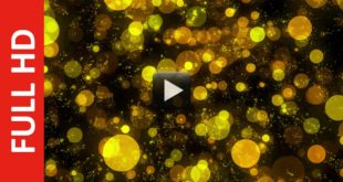 Glowing Yellow Bokeh Particles - Free HD Video Background Loop
