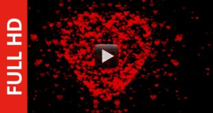 Hey Mama LOVE Particles Animation in Black Screen