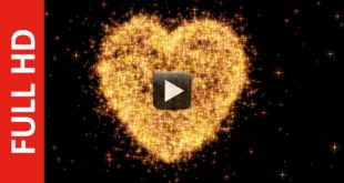 Particles Heart Shape Animation | Made for Valentine's Day