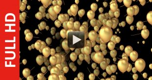Gold Balloons Advance Animation Background in Black Screen