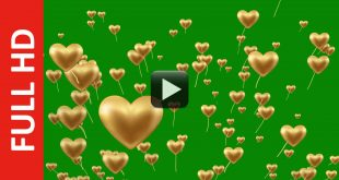 Heart Love Kites Animation Green Screen