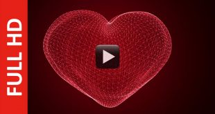 Romantic Mesh Love Animation Background for Title