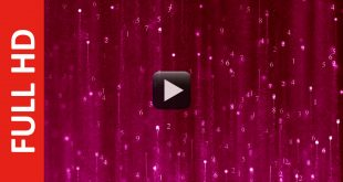 Matrix Numbers Background Video Animation