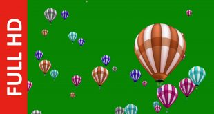Colorful Hot Air Balloons Motion Video Background In Green Screen
