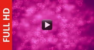 HD Love Motion Background Loop - Romantic Love Heart Wedding Background Animation