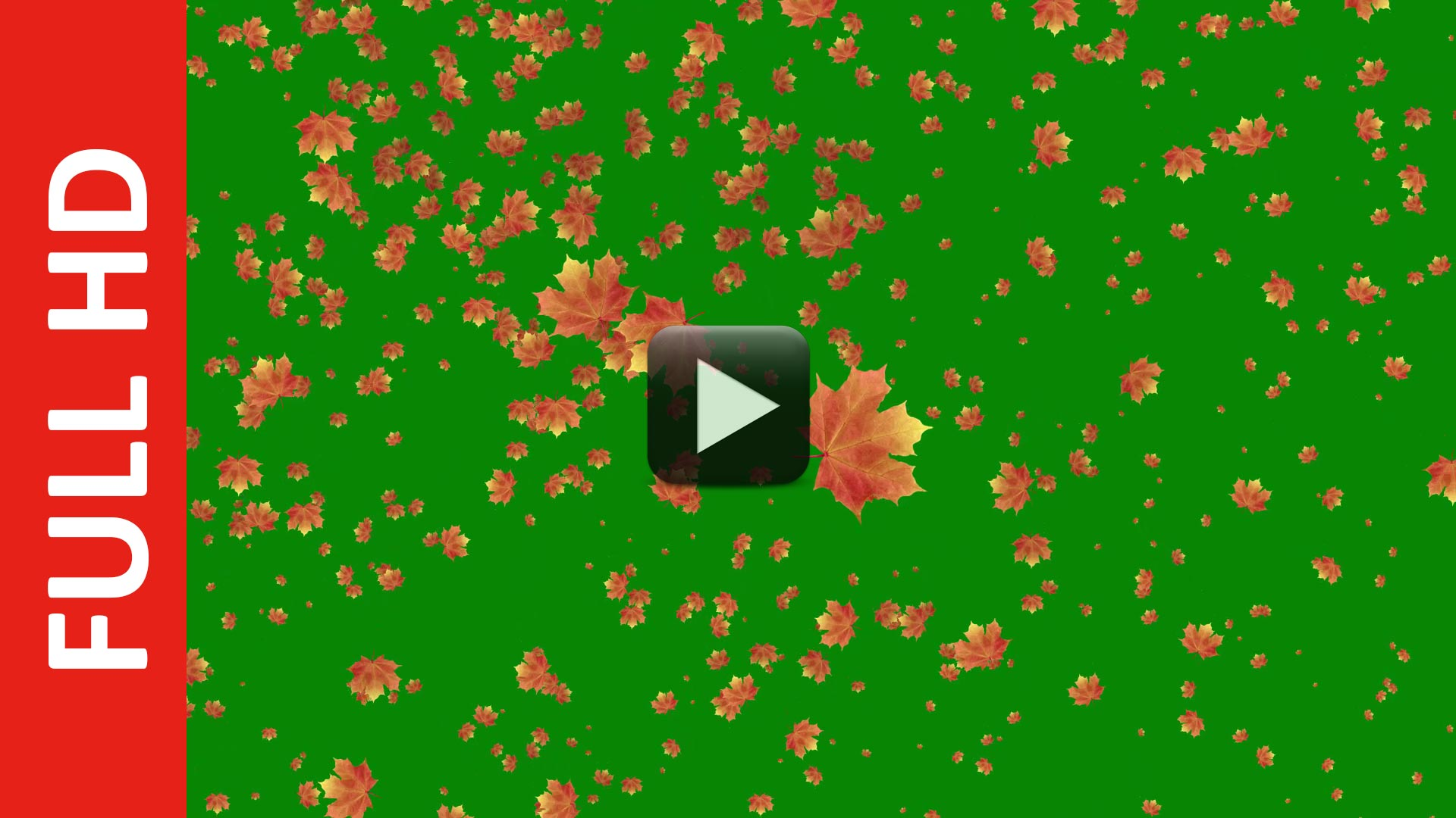 Autumn Leaves Falling Green Screen Royalty Free All Design Creative