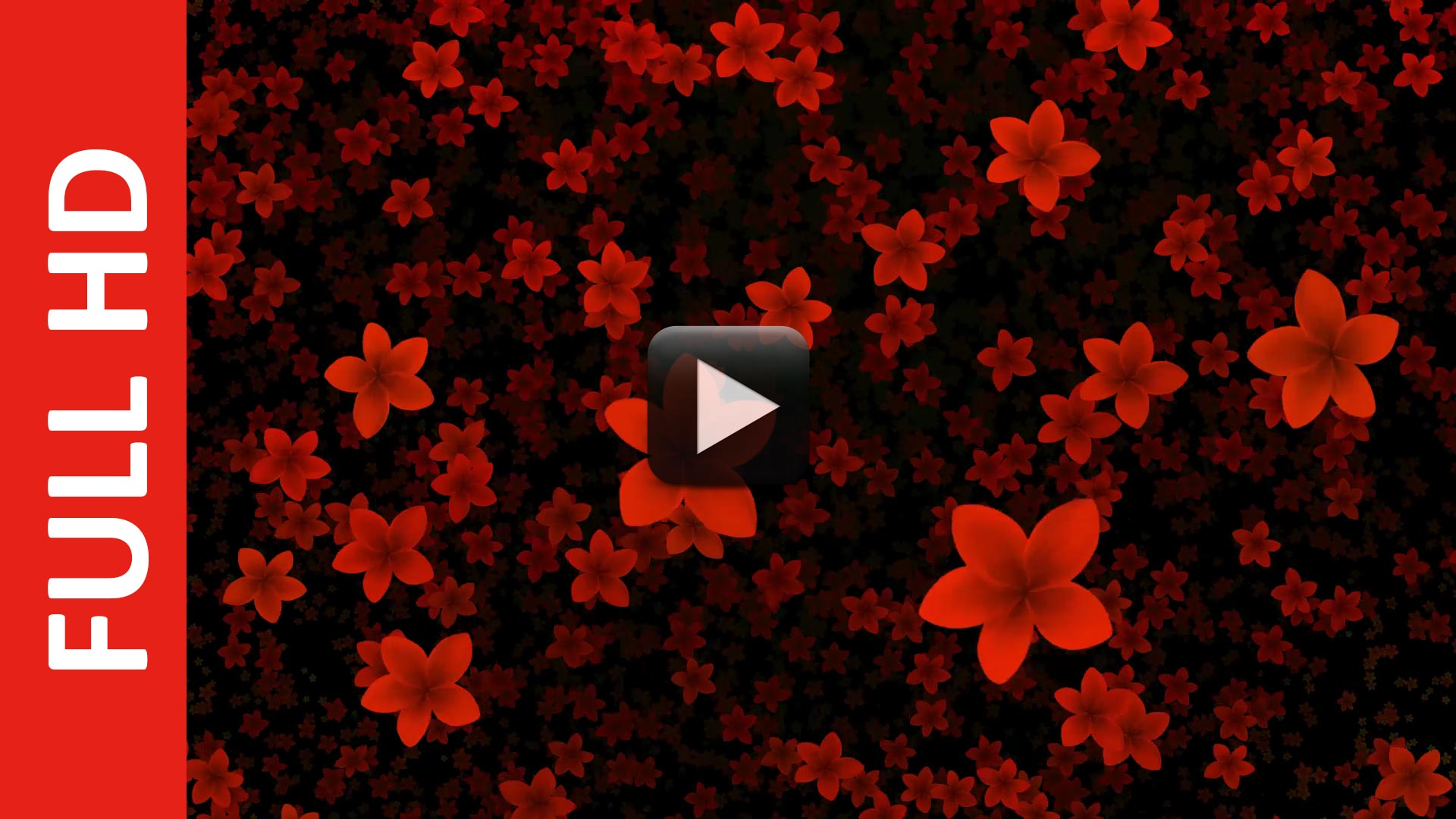 Flowers Video Background Flowers Healthy