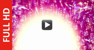 Birthday Title Background Video Royalty Free