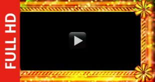 HD Animated Wedding Frame Video Royalty Free
