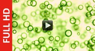 Circular Particles Moving   No Copyright Motion Graphics