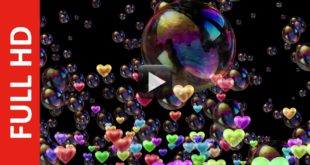 Love & Bubbles Black Screen Background Video Effect