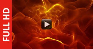 New Motion Background Video Effects HD Royalty Free Footage
