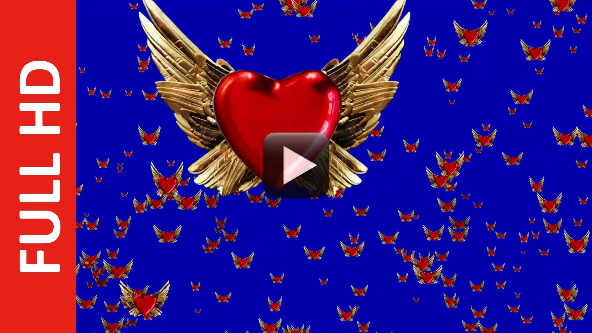 2000 LoveBird Blue Screen Background Video Effect