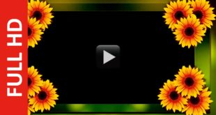 Multi Color Title Frame Background Video Effect HD 1080p