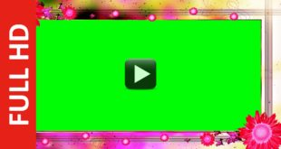 Wedding Motion Background Video Full HD 1080p
