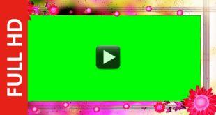 Wedding Motion Background Video Full HD 1080p