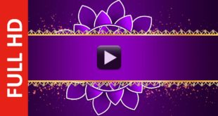 Purple Wedding Title Motion Background Video Effects HD