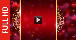 Royal Intro Title Wedding Invitation Background Video Effects HD