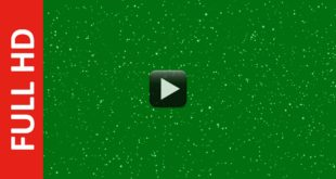 Free Glitter Particles Animation Green Screen Background Loop Video Effect