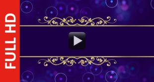 Dark Blue Magenta Wedding Invitation Video Background Without Text