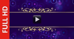 Dark Blue Magenta Wedding Invitation Video Background Without Text