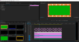 Adobe Premiere Pro Tutorials For Beginners-Adobe Premiere Pro Tutorial for Beginners pdf