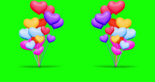 Colorful Love Balloons Happy Birthday Green Screen Video | No Copyright Footage